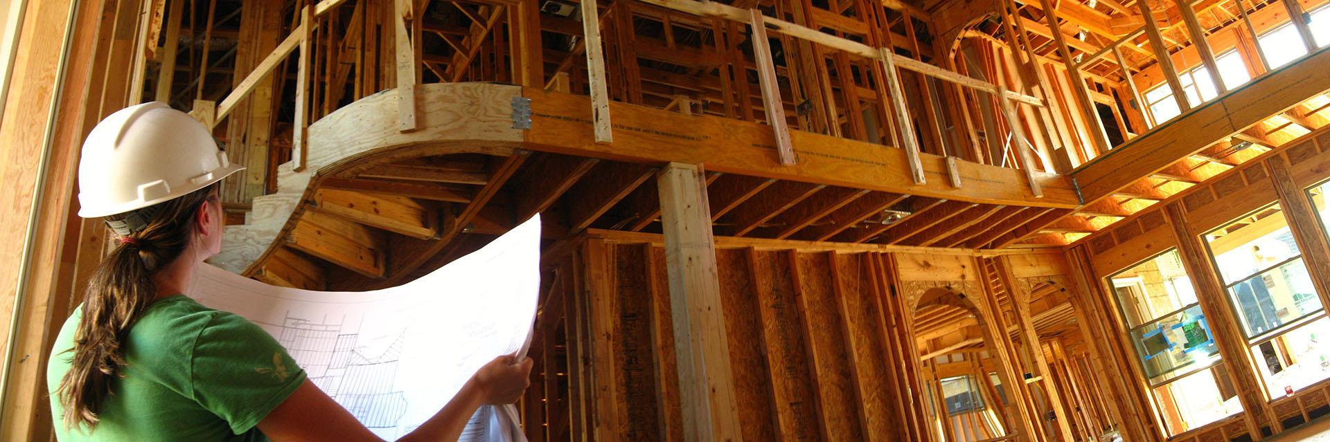 erica wood frame